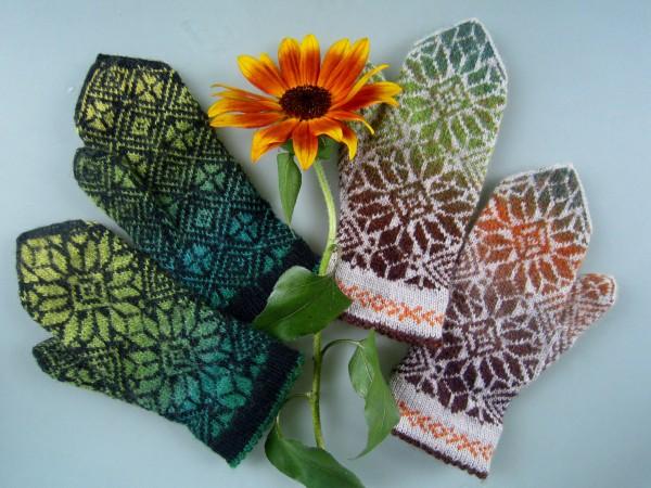 Handschuhe Nomen