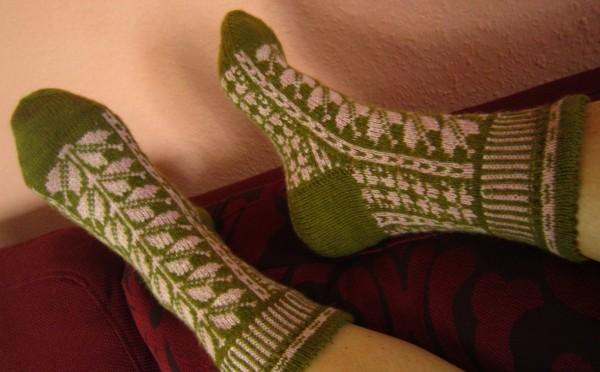 Campanula Socken